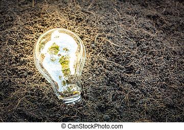 Bulb con planta creciendo dentro