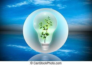 Bulb con una planta dentro