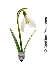 Bulb, gotas de nieve de bombilla