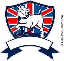 bulldog, bandera, orgulloso, británico, inglés