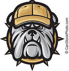 bulldog, cabeza, gorra, beisball