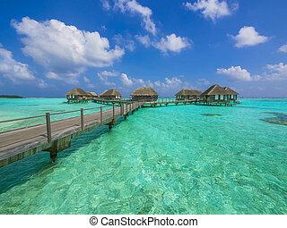 Bungalows de agua en el paraíso