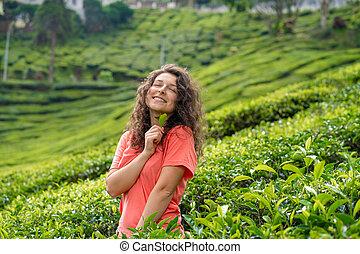 bushes., valle, hermoso, niña, posar, medio, té verde, morena, entre