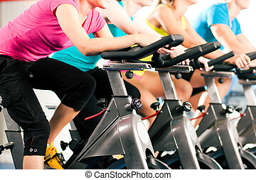bycicle, gimnasio, interior, ciclismo