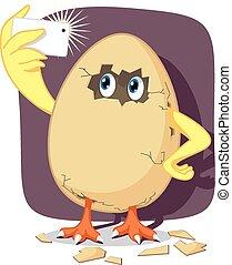 cáscara, bebé, huevo, polluelo, el tramar