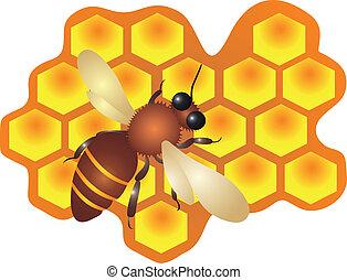 células, vector, relleno, abeja de la colmena