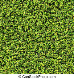 césped frondoso, texture., bush., seamless