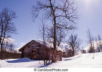 Cabaña de invierno