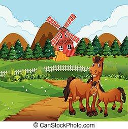 Caballo en el paisaje agrícola