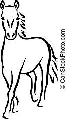 caballo, líneas, caligraphy