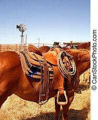 Caballo ranchero y silla