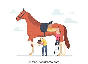 caballo, stableman, purebred, limpieza, cuidado, aparejar, caracteres, cepillo, semental, diminuto, piel, inmenso, pezuñas, mujer
