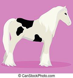 caballo, tinker