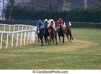caballos, carreras