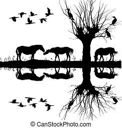 Caballos cerca del lago y cormoranes en el árbol.eps