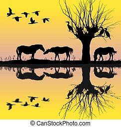 Caballos cerca del lago y cormoranes.eps