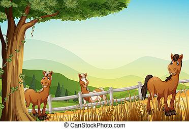 Caballos en la colina cerca del árbol