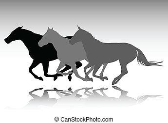 caballos salvajes, corriente