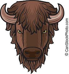 cabeza, búfalo