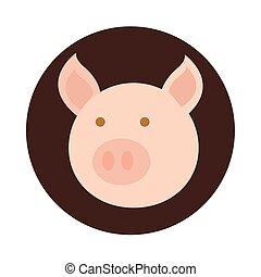 cabeza, caricatura, plano, cerdo, icono, animal, agricultura, granja, bloque
