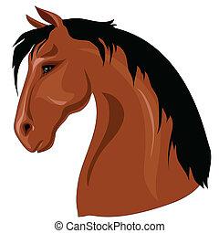 Cabeza de caballo marrón
