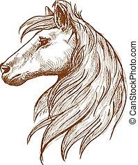 Cabeza de caballo salvaje con un dibujo vintage fluído de melena