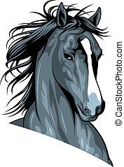Cabeza de caballo salvaje