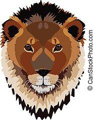 Cabeza de león macho