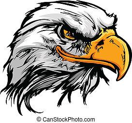 cabeza, ilustración, águila, vector, gráfico, mascota, calvo