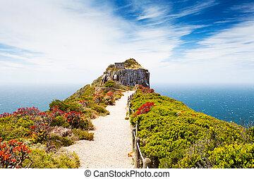 Cabo de punto de reserva natural, África del Sur
