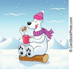 cacao, caliente, oso polar