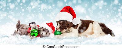 Cachorro de Navidad y gatito en la nieve