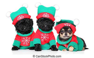 Cachorros disfrazados de Navidad