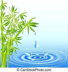 Caen gotas de agua de las hojas de bambú