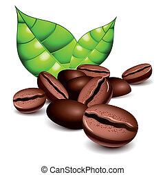 Café con frijoles y hojas
