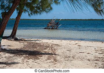 caimán, kai, playa