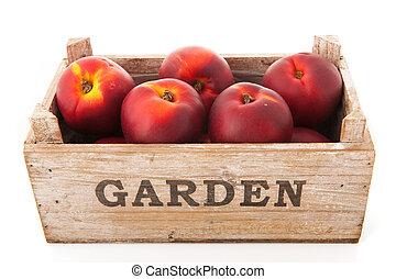 cajón, nectarinas
