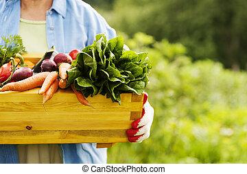 caja, vegetales, mujer, 3º edad, tenencia