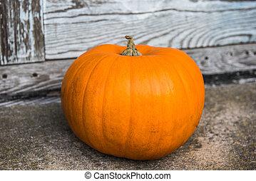 calabaza, frente, halloween, pasos, hogar