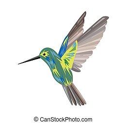caliber., imagen, multicolor