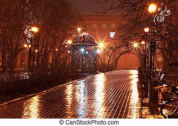 Callejón nocturno en el parque
