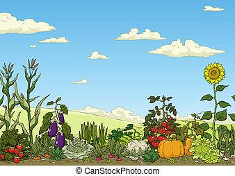Cama de jardín vegetal