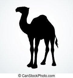 camels00000101110.eps