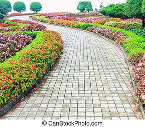 Camina por el jardín