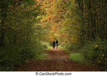 Caminantes en el camino del bosque