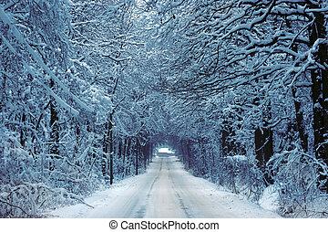 Camino de campo en invierno