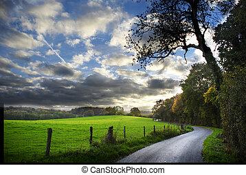 Camino de campo en otoño