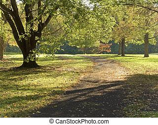 Camino de otoño temprano