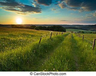 Camino de sol