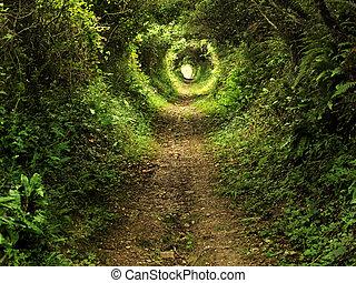 Camino del túnel encantado en el bosque